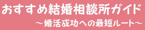 おすすめ結婚相談所ガイド~婚活成功への最短ルート~